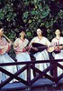 静寂の雅―台湾の南管音楽