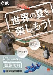夏休み期間(7月21日~8月26日)の観覧料無料について「世界の夏を楽しもう!」