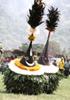 仮面文化と観光:パプアニューギニアの場合