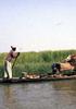 サバンナの「河の民」ボゾの生のかたち