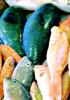 沖縄の魚にみる生活文化