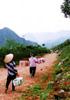 境界を越えて-ベトナムの事例から-