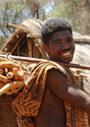 マダガスカルにおける狩猟採集民のくらし