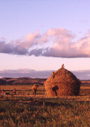 マダガスカル農村部の日常生活と墓制