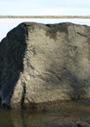 シカチ・アリャンの岩面画とナナイの神話
