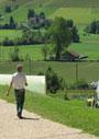 スイスにおける高齢者のウェルビーイングと地域の癒し文化