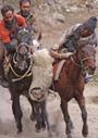 「異教徒の地」と「光の地」――パキスタン・アフガニスタンのカタ人とカラーシャ人