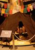 南アジア展示「生態となりわい」の見どころ