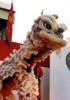 中国獅子舞から見る「多みんぞくニホン」