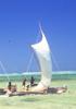 現代に生きる島の人々 ─ イースター島からマダガスカルまで